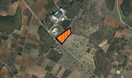 Парцел 12410 m² в Халкидики