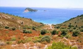 Land 40687 m² in Athos, Chalkidiki