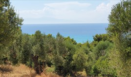 Land 6412 m² auf Kassandra (Chalkidiki)