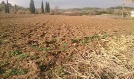 Zemljište 12150 m² na Kasandri (Halkidiki)