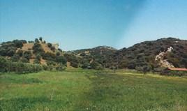 հողատարածք Խալկիդիկի-Աթոսում