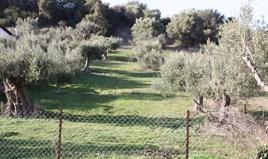 Земельный участок на Кассандре (Халкидики)