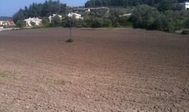Zemljište 4100 m² na Kasandri (Halkidiki)
