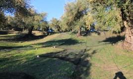 Land 574 m² in Corfu
