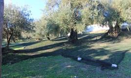 Land 578 m² in Corfu
