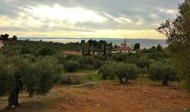Zemljište 6460 m² na Sitoniji (Halkidiki)