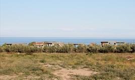 Geschaeft 1100 m² an der Olympischen-Riviera