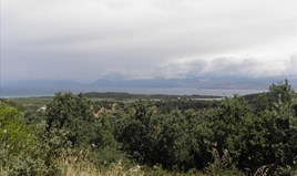 Zemljište 15000 m² na Krfu