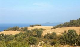 Działka 4000 m² na Athos (Chalkidiki)