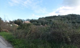 Land 767 m² in Corfu