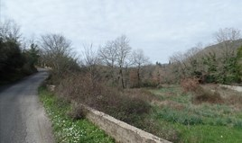 Arsa 6200 m² Korfu'da