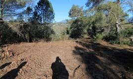 Земельный участок 11017 m² на о. Корфу
