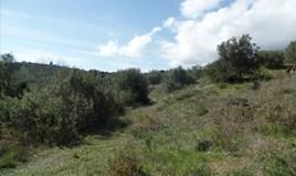 Γή 4536 m² στην Κέρκυρα
