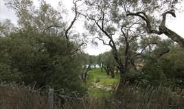 Γή 10000 m² στην Κέρκυρα