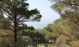 Land 5083 m² in Corfu