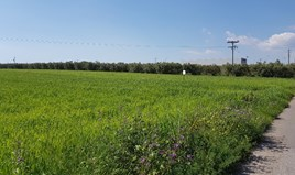 Zemljište 16856 m² na Halkidikiju