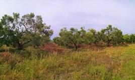 Zemljište 5330 m² na Sitoniji (Halkidiki)