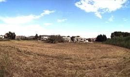 Terrain 7135 m² à Sithonia (Chalcidique)