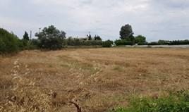 Zemljište 4800 m² na Kasandri (Halkidiki)