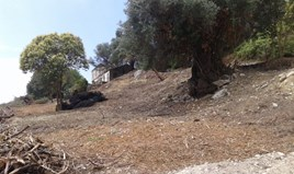 Land 2250 m² in Corfu