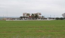 Zemljište 11250 m² na Halkidikiju
