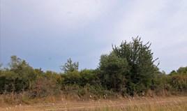 Land 3500 m² auf Korfu