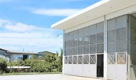 Yatırım, iş 150 m² Pieria'da