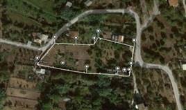 სასტუმრო 4456 m² კორფუზე