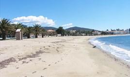 Zemljište 4816 m² na Sitoniji (Halkidiki)