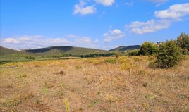 Zemljište 30600 m² na Sitoniji (Halkidiki)