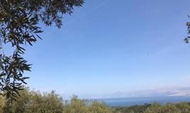 Land 6000 m² in Corfu
