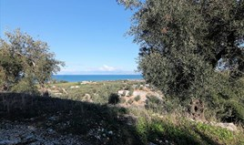 Land 41000 m² in Corfu