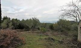 Land 5500 m² in Corfu