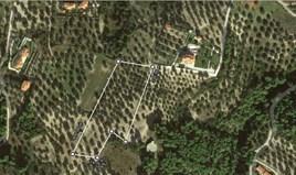 Zemljište 6400 m² na Kasandri (Halkidiki)