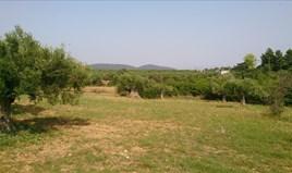 Zemljište 4589 m² na Sitoniji (Halkidiki)