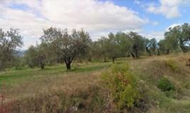 Land 4500 m² in Sithonia, Chalkidiki