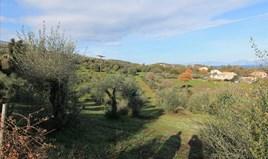 Land 9000 m² auf Korfu