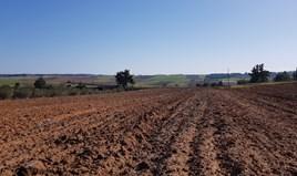Zemljište 11250 m² na Kasandri (Halkidiki)