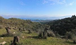Γή 6000 m² στην Κέρκυρα