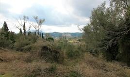 Arsa 6189 m² Korfu'da