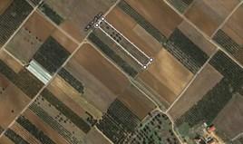 Парцел 7200 m² в Халкидики