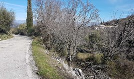 Land 2600 m² in Corfu