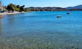 Land 64000 m² on the Euboea island