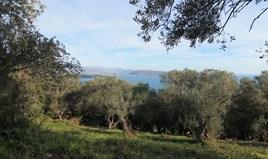Земельный участок 2400 m² на о. Корфу