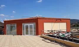 Бизнес 330 m² в Ситония (Халкидики)