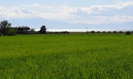 Земельный участок 27000 m² в пригороде Салоник