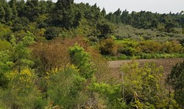 Zemljište 2468 m² na Kasandri (Halkidiki)