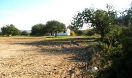 Land 14000 m² in Limassol