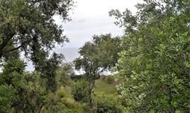 հողատարածք 5000 m² Կորֆու կղզում
