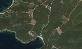 Земельна ділянка 4485 m² на Афоні (Халкідіки)